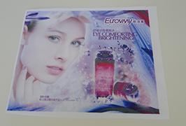 Banner Kain Flag dicithak dening printer eco solvent 1.6m (5 kaki) WER-ES160 4